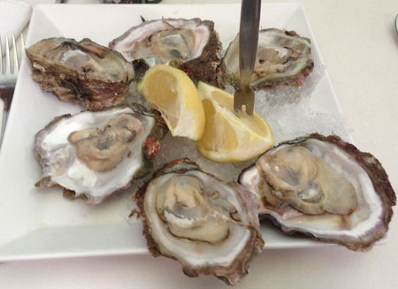 South African Mossel Bay Oysters