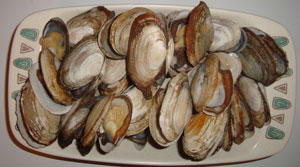 "pounds shell clams (soft-shelled, ""steamers"")"